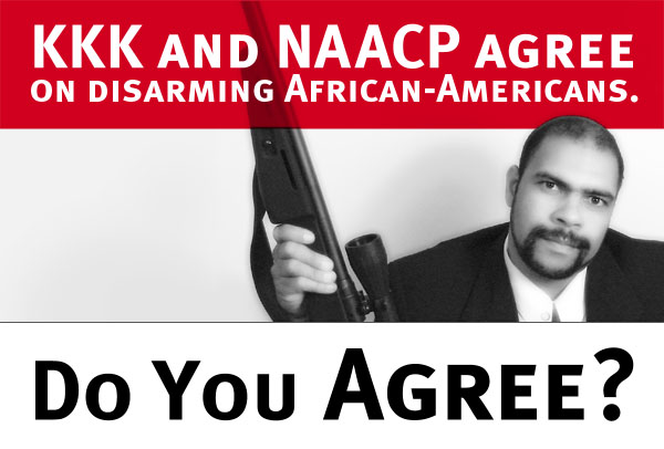 Black People, Black Guns and Black Politics