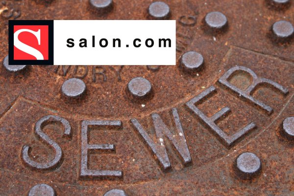 SEWER:  Salon Mag okay promoting pedophilia, but not your gun rights