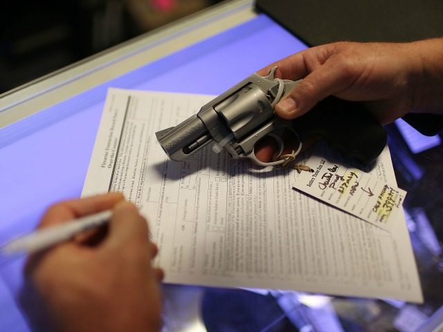 REAL STIMULUS:  Black Friday Gun Sales Sets Record