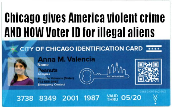 VoterID for illegals
