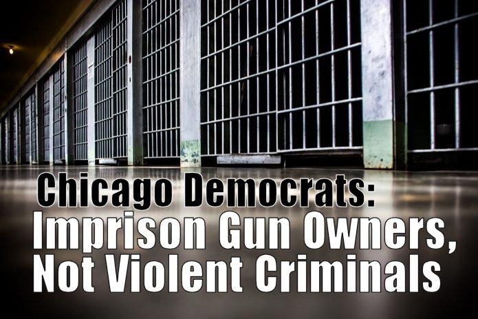 IL DEMOCRAT PARTY:  Imprison Gun Owners, While Allowing Violent Criminals to Roam Free