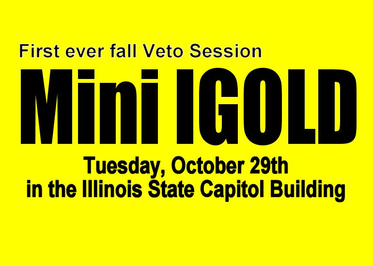 DETAILS INSIDE!  Mini-IGOLD:  Tuesday, October 29th in Springfield